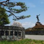 茅野スポーツ公園桜 (51)