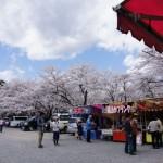 聖光時桜 (3)