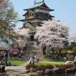 高島城桜2 125