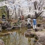 聖光時桜 (14)